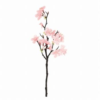 薄紅の桜 ミニ